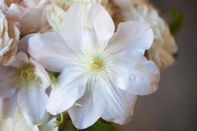 3-twin-peaks-wedding-flowers
