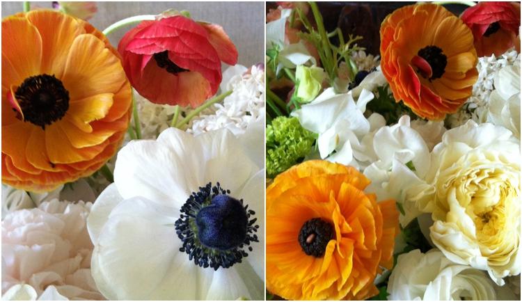 flowerwildworkshopsps_0493