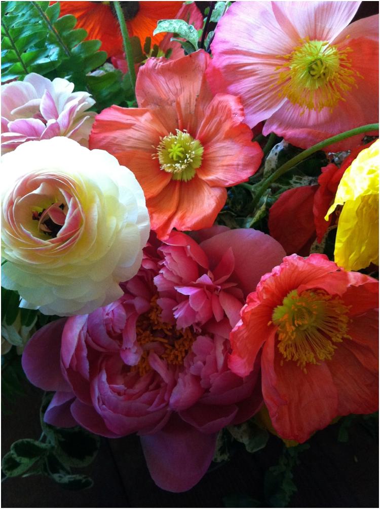 flowerwildtravel_0501