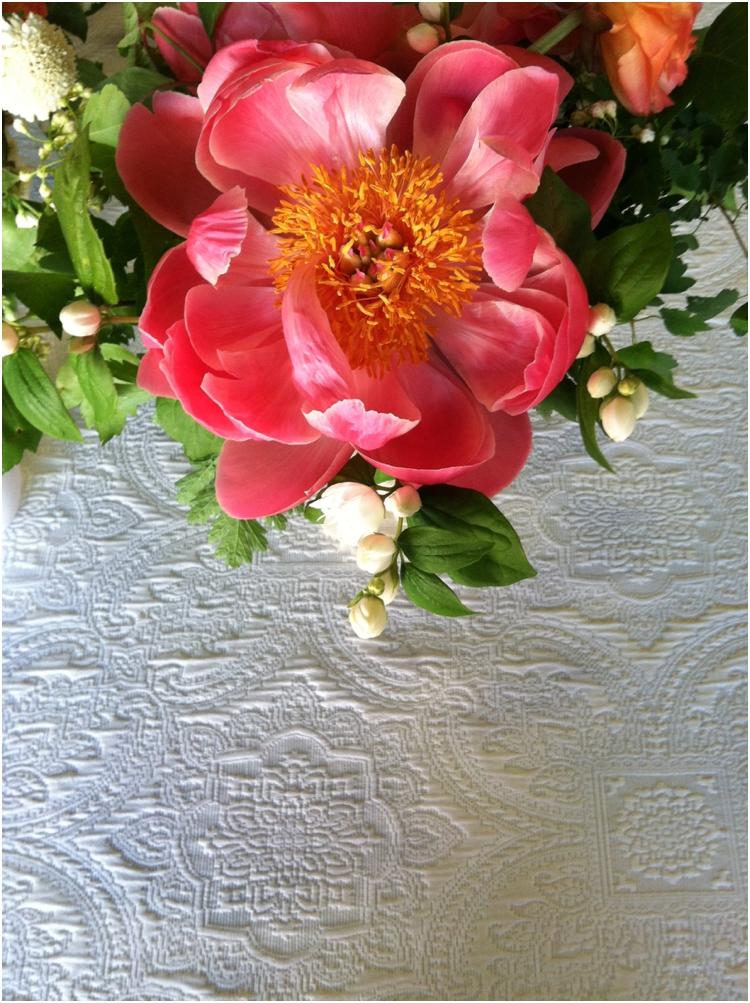 flowerwildtravel_0509