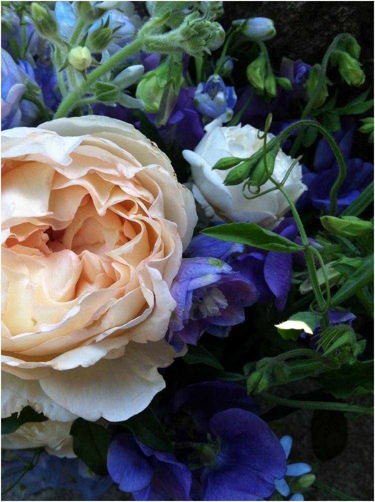 flowerwildtravel_0577