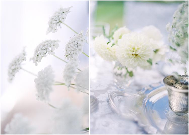 flowerwildzmod_0601