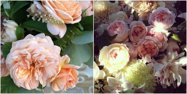 flowerwildzmod_0621